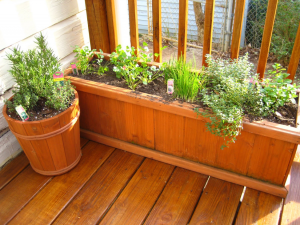 Porch Natural Herb Garden